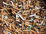 Cigarette Butts?