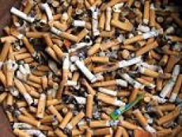Cigarette Butts?