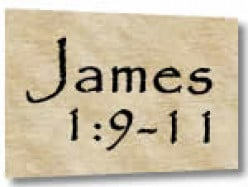 What's Your Status?  James 1:9-11