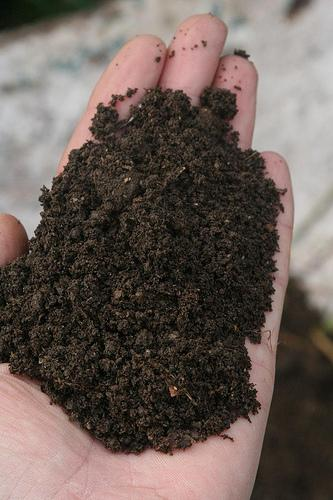 Adding compost in fall will provide huge benefits next year.