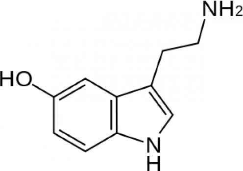 A serotonin molecule