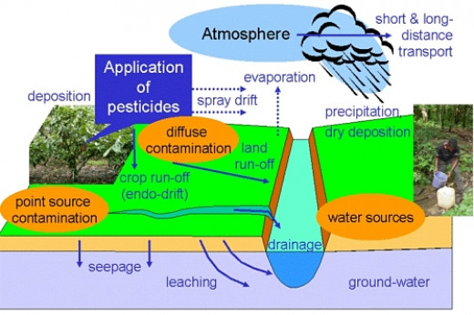 The way pesticide spreads through the environment