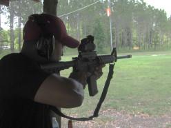 How the Fringe is Impacting the Gun Control Debate