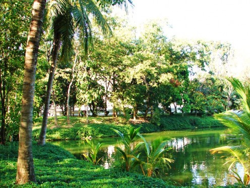 A Spiritual, Serene, Healing  Environment.  Study Reiki Free; article accompaniment image.