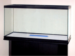 The gallery for large empty fish tank for Empty fish tank