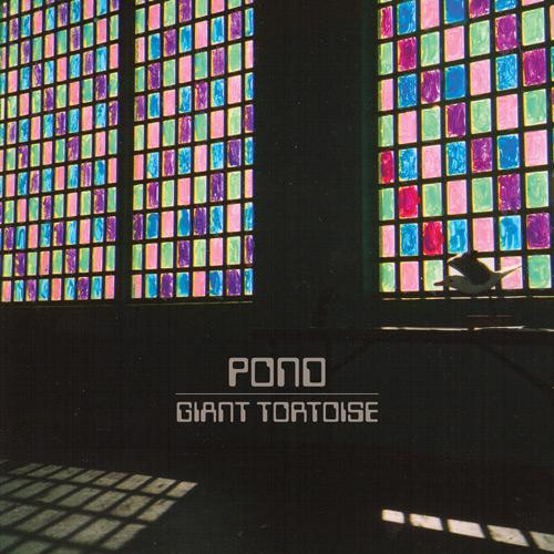 "Trippy album artwork for the Pond's new song ""Giant Tortoise""."