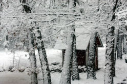 Quaint little shed surrounded in snow.