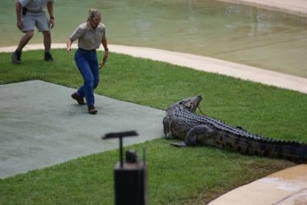 Terri Irwin showing her bravery with Graham, Australia Zoo's resident croc.  Photographed by Ralph Edgell