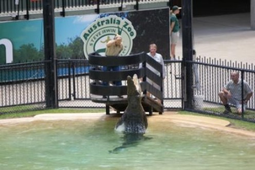 Terri Irwin demonstrating how high crocs can leap, photographed by Ralph Edgell