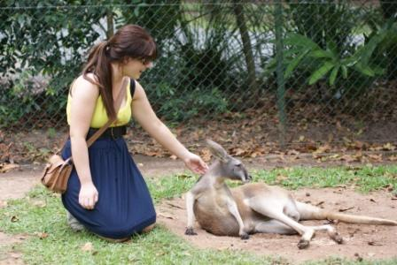 Jess patting kangaroo, photographed by Ralph Edgell