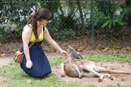 Jess patting kangaroo, photographed by Ralph Edgell