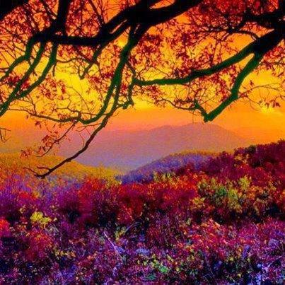 Heartfelt beauty and warmth.