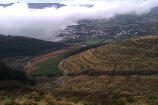 A view down to Rostrevor from the new tracks.