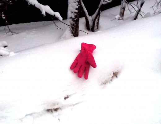 Someone lost a glove. Pink looks good on white!