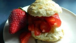 Light and Flaky, Buttermilk Strawberry Shortcake