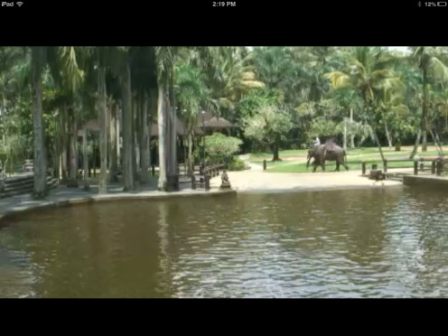 Screen shot of the Bali Elephant Tours Bathing Pool Cam