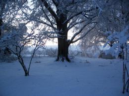 Major Snowfall