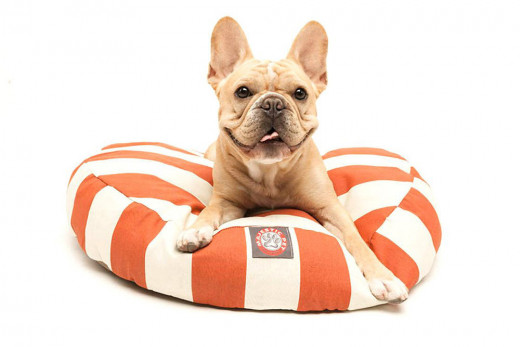 Orange Striped Dog Bed by Inubar