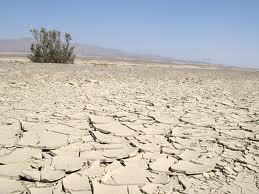 Is this how you see dehydration ?
