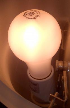 Incandescent Light Bulb Ban