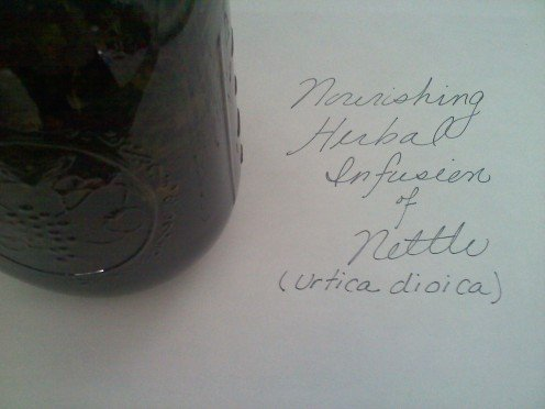 Nettle Herbal Infusion