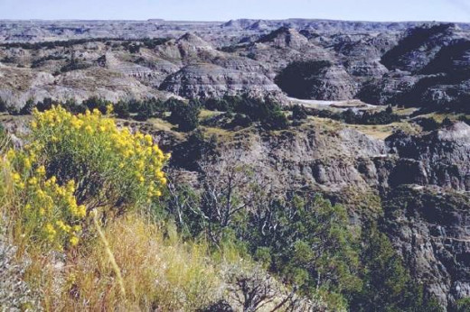 The Badlands in Theodore Roosevelt National Park