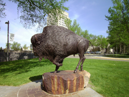 Buffalo Sculpture at the North Dakota State Capitol