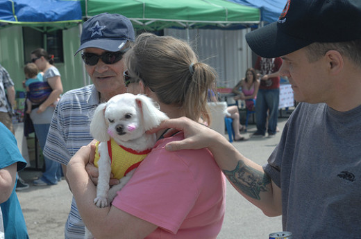 Your pets or causes involving animals bring together diverse groups of people. Pet parks, animal shelters and even the local pet store may introduce you to a new social set, one person at a time.