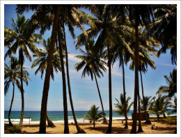 Longing for a tropical breeze instead of the stale air of your cubicle? There are ways to take a cheap vacation!