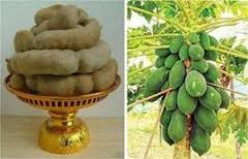 Health Benefits of Tropical fruits; Tamarind and Papaya