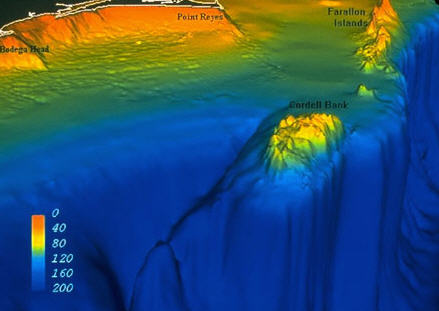 3D image of the underwater area