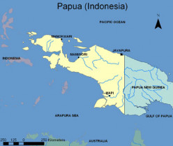 Why are racist Indonisians engaging in ethnic genocide in West Papua?