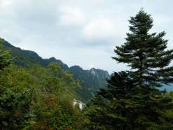 Asian Wildlife Part IV: Mountain Wildlife