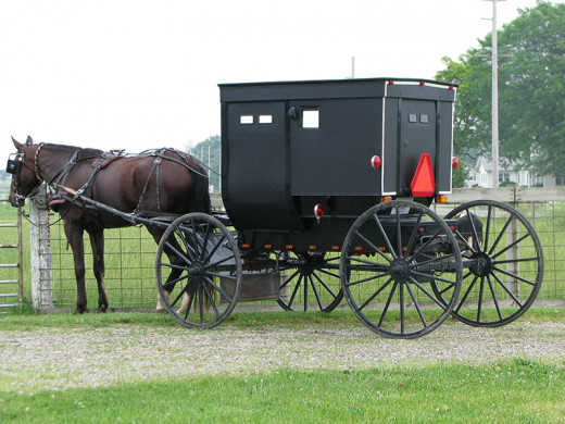 Amish buggies are the main mode of transportation.  You will find hitching post in the front of most stores including Wal Marts in the Amish Country side.