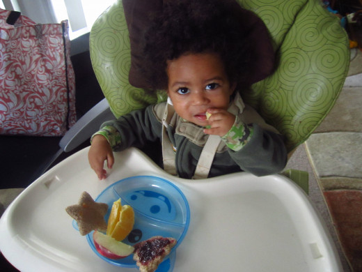 Juju loves fresh fruit, wheat toast with jam, and scrambled eggs (which weren't ready yet when this pic was taken) for breakfast.  Cookie cutters make toast fun and just his size.