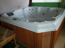 Our future Tilapia fish tank, an older 8 person hot tub that has been long out of commission.