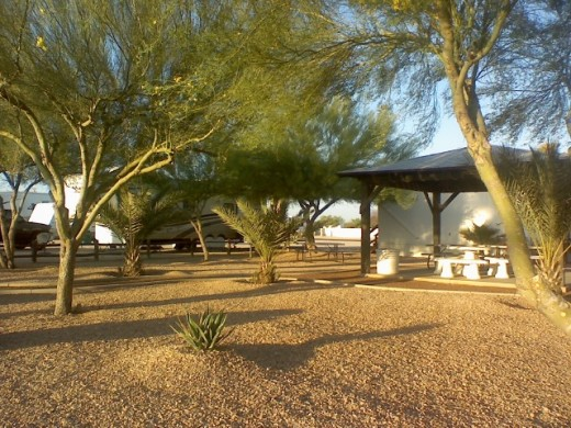A Desert Paradise