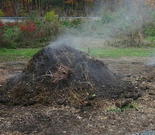 Steaming hot compost pile.