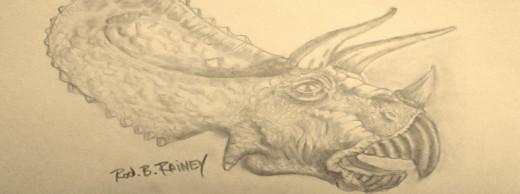 Triceratops!!