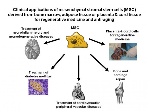 Regenerative and anti-aging applications