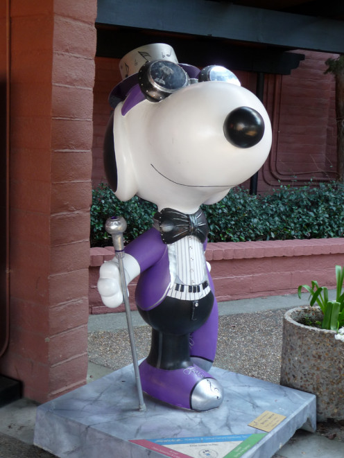 The Snoopy statues, mentioned in Pete Stringfellow's song, (and the other characters of the Peanuts gang) can be found all over Santa Rosa and her nearby towns. * This Snoopy is located at the Wells Fargo Center For The Arts in Santa Rosa. *