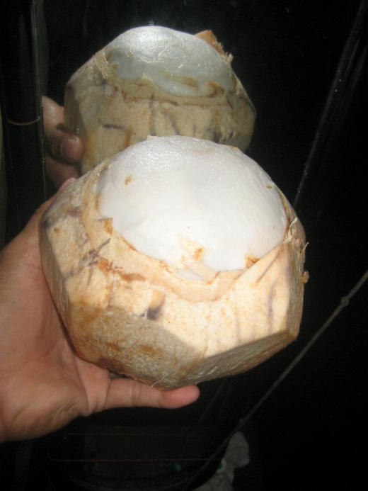 There's a buko juice inside this young coconut (Photo Source: Ireno Alcala)