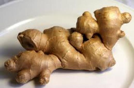Ginger (Zingiber officinale)