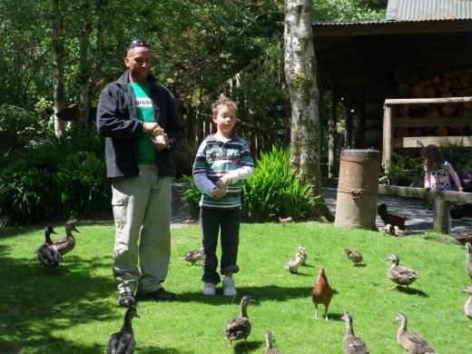 Me and my son feeding the birds