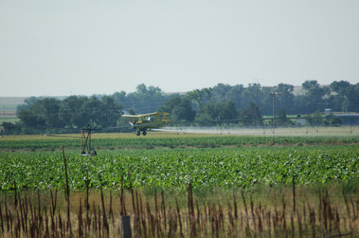 Crop dusters cannot control the drift of their chemicals that are spread by air currents and wind beyond their targeted area.