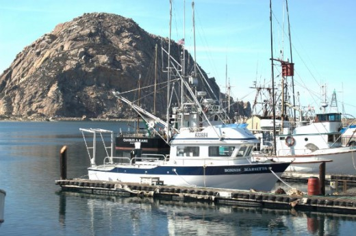 Morro Bay is only 30 miles south of Hearst Castle.