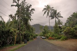 A typical residential street in Waimanalo