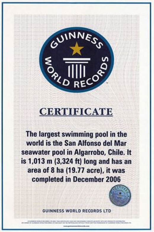 Award Winning Certificate - Guinness Book of World Records