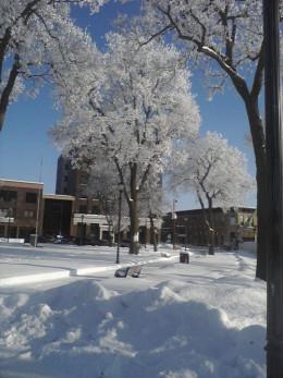 Winter in the Park in Iowa