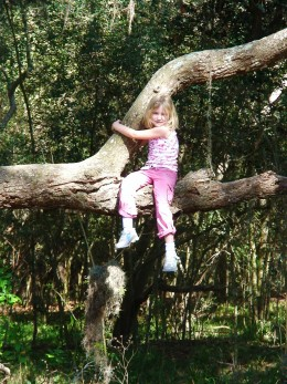 Playing in the park, and noticing,for the first time that there's a tree perfect for climbing.